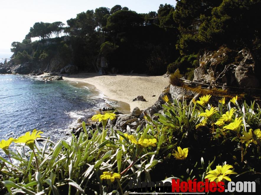 platges de Calonge i Sant Antoni, Cala Cristus
