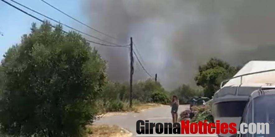 un foc a Llançà crema 50 hectàrees