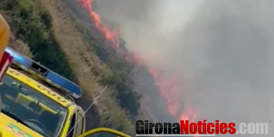 alt - incendi afecta 48 hectàrees de Portbou i Cervera de la Marenda